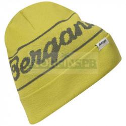 Шапка Bergans Logo Beanie, Green Oasis/Green Mud