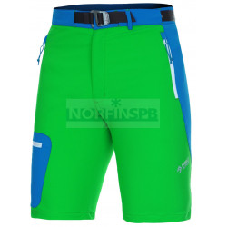 Шорты Direct Alpine CRUISE SHORT green/blue